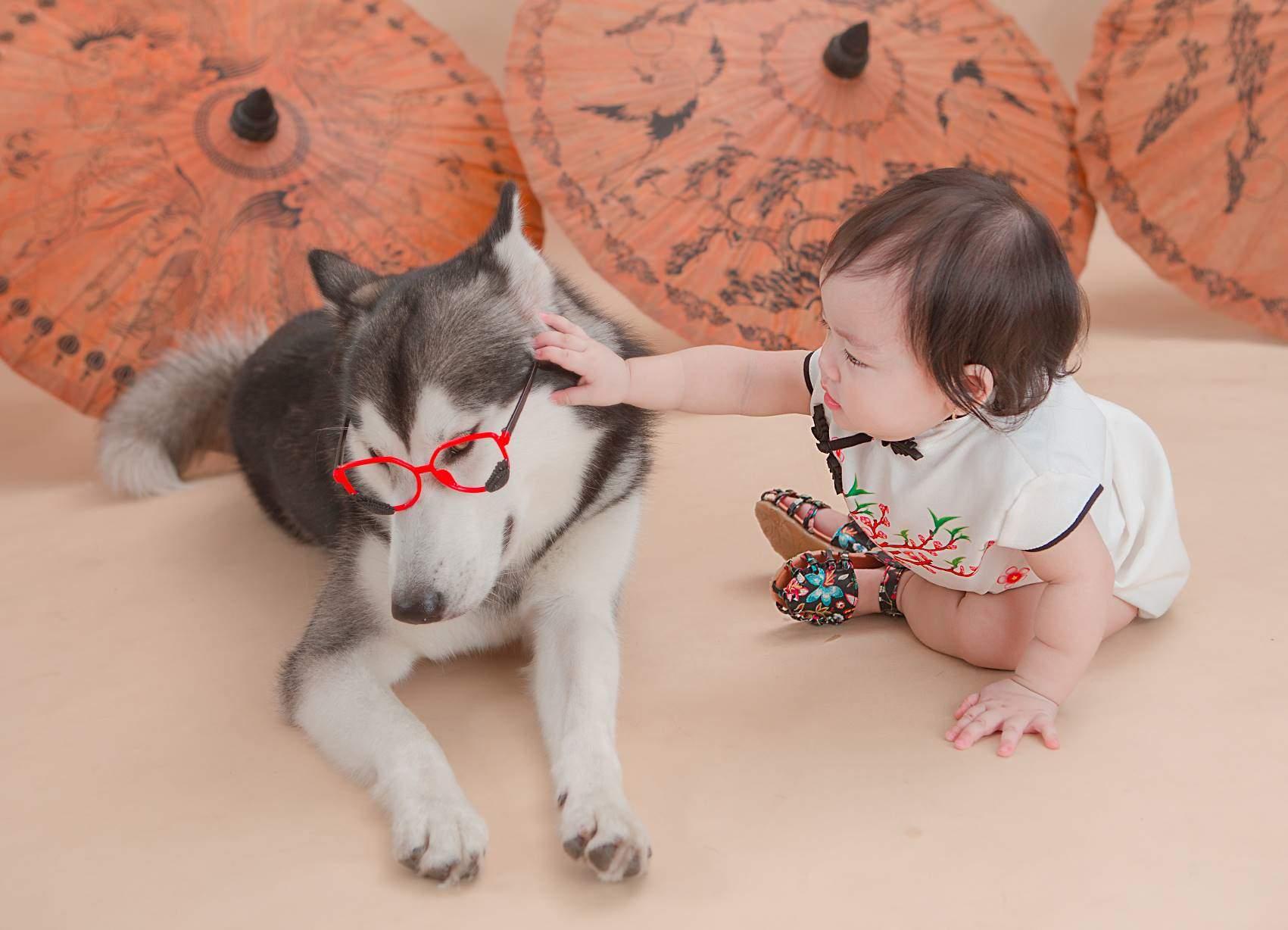 studio chụp ảnh cho bé với thú cưng