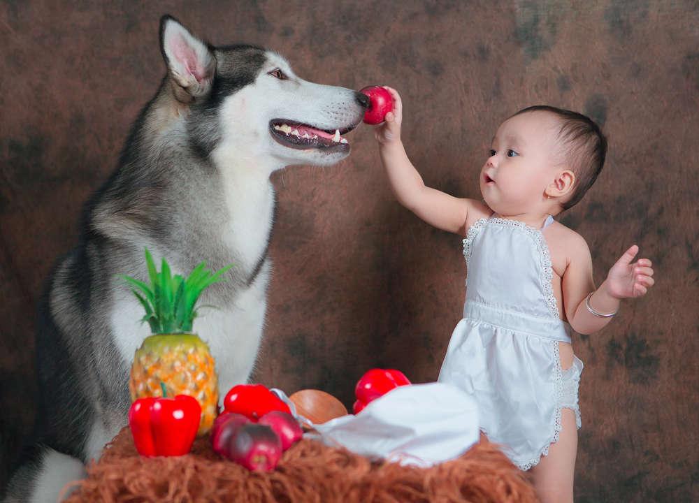 Chụp hình cho bé dễ thương